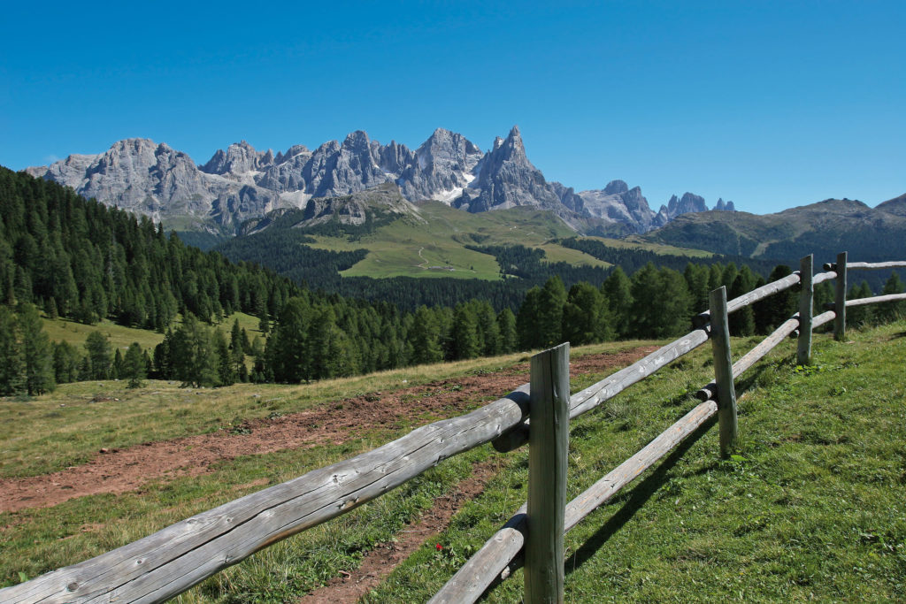 Pale di S Martino Dolomites